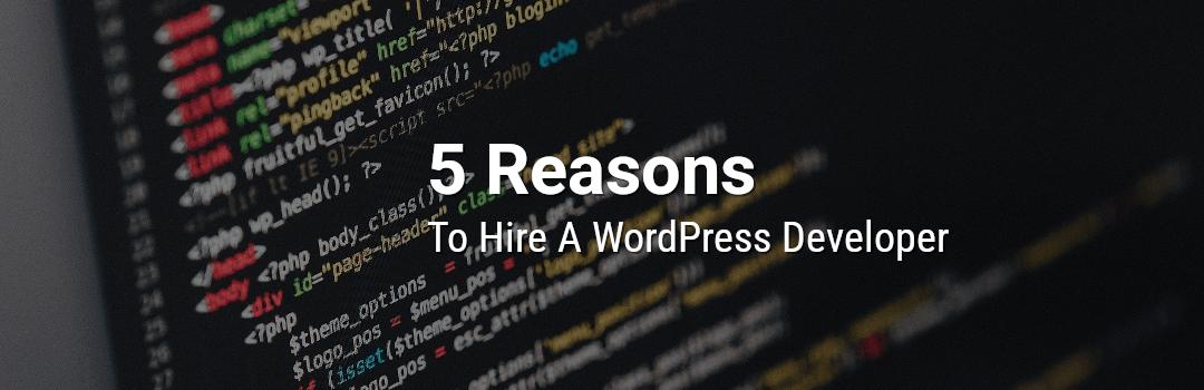 5 Reasons To Hire A WordPress Developer